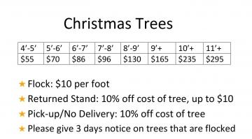 Tree Prices